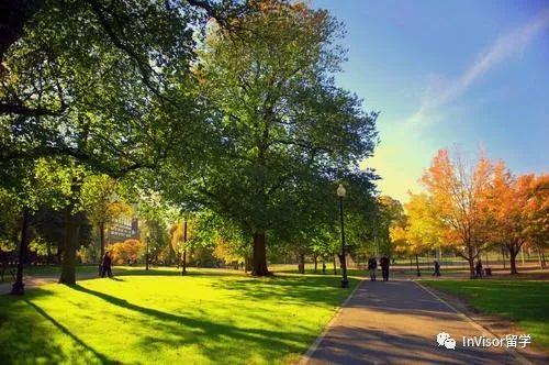 波士顿中央公园
