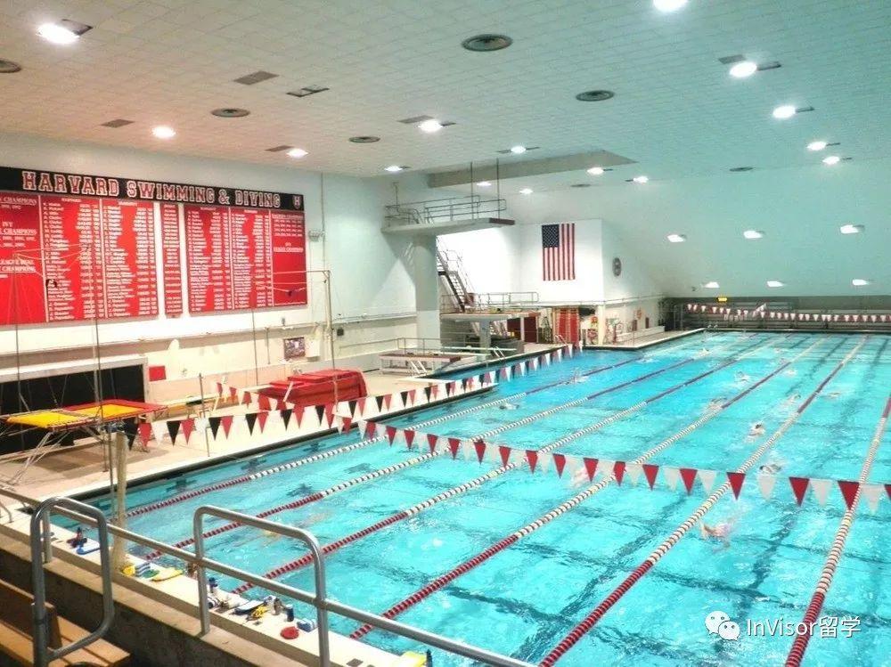 哈佛大学游泳池